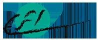 Logo LFI SPA